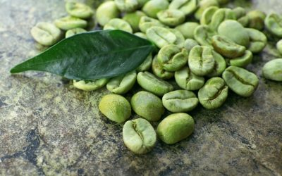 Green Coffee Extract - Botanic Beauty